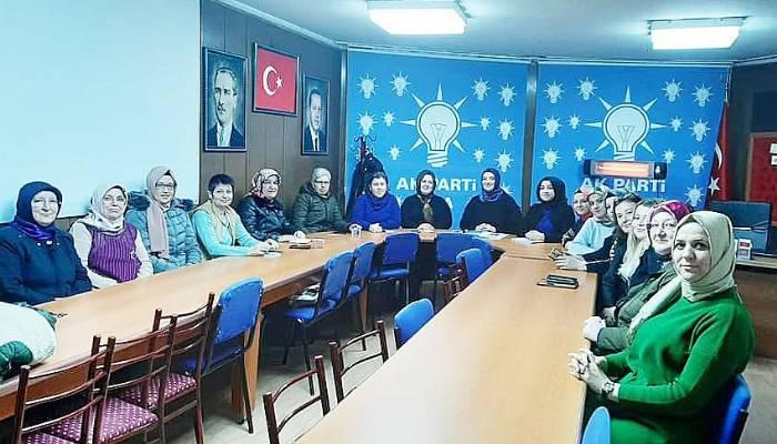 AK PARTİ KADIN KOLLARINDAN İSTİŞARE VE DEĞERLENDİRME TOPLANTISI