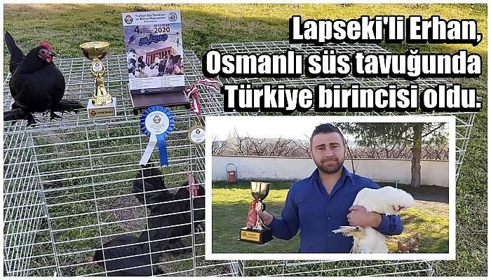 Osmanlı süs tavuğu ve horozu yarışmasında Çanakkale'ye Türkiye birinciliği geldi
