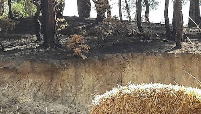 Köydeki 3 yangında kundaklama şüphesi