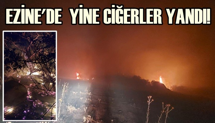 Ezine'de yangın çıktı!
