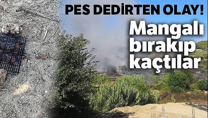 Mangal yaparken yangın çıkardılar