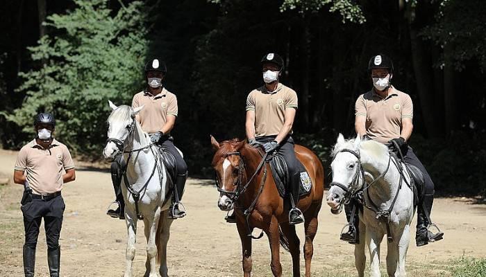 Ormanlar atlı ekiplere emanet