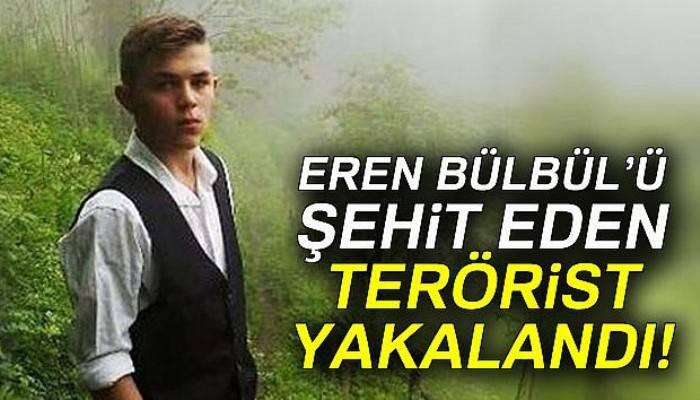 Eren Bülbül'ün katilli Giresun'da yakalandı
