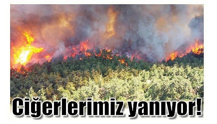 Dumanlar her yeri kapladı, Ciğerlerimiz yanıyor!