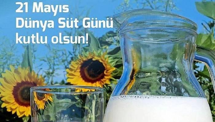 Biga Ziraat Odası Süt Günü'nü Kutladı