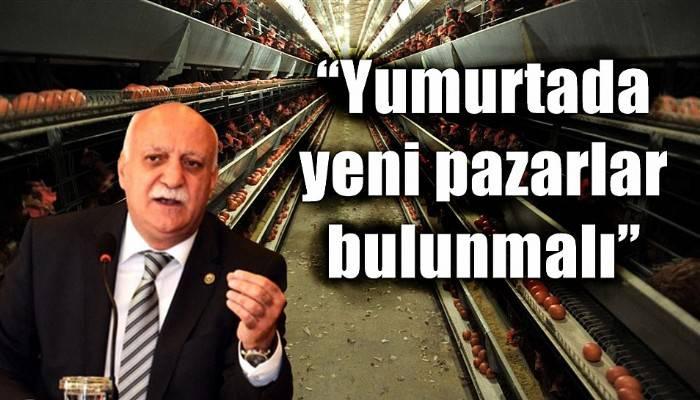 'Yumurtada yeni pazarlar bulunmalı'