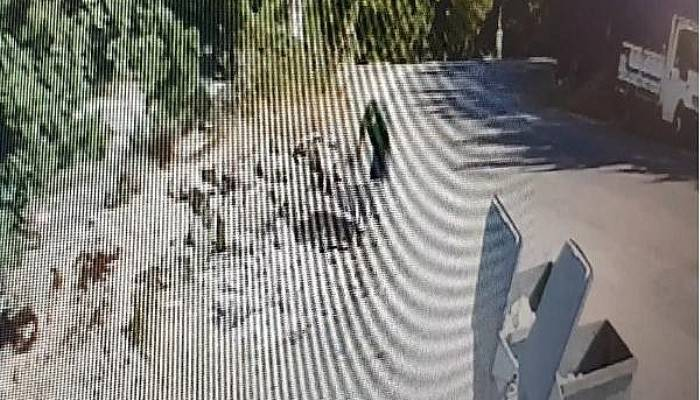 Çanakkale'de Kilit Taşı Çalan 6 Kişi Yakalandı