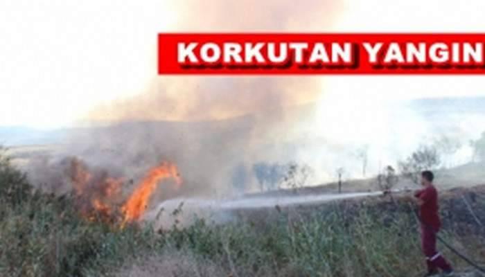Çan'da Arazi Yangını
