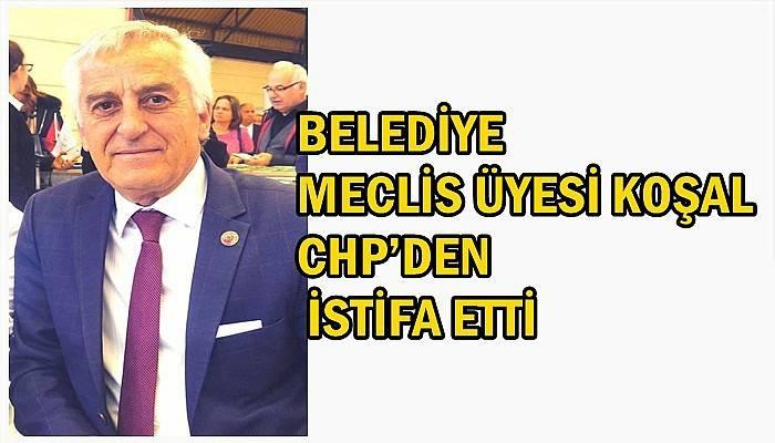 Belediye Meclis Üyesi Koşal CHP'den istifa etti