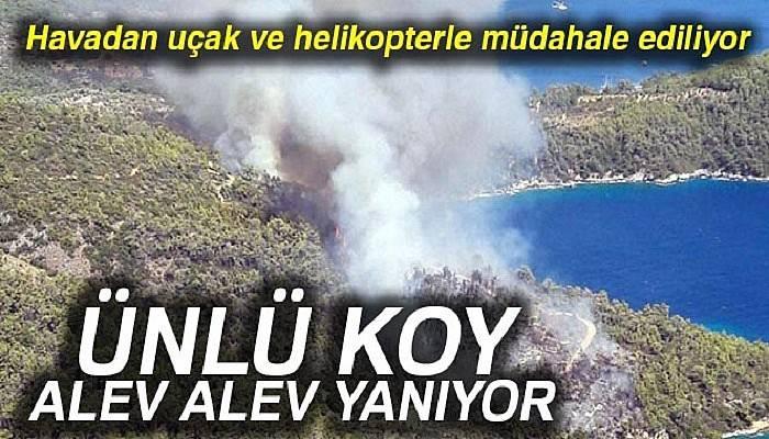Muğla'da orman yangını büyüyor