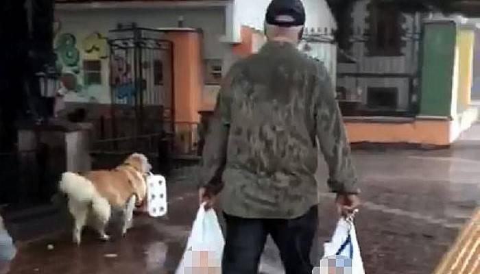 'Karamel', sahibinin yükünü hafiflettti (VİDEO)