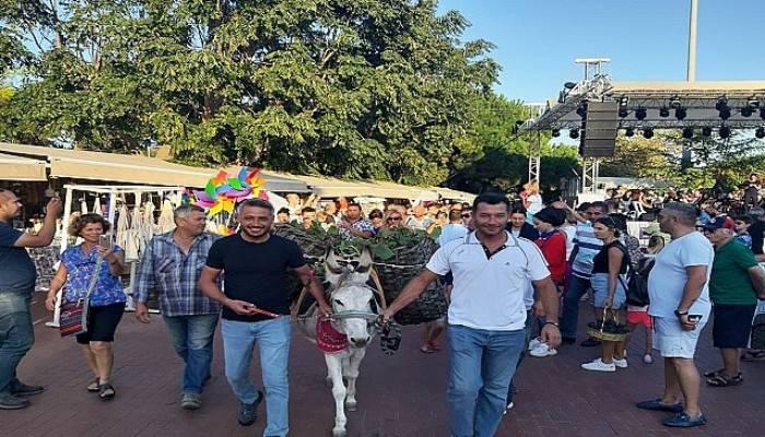 Bozcaada'da 20'nci Kültür, Sanat ve Bağbozumu Festivali başladı (VİDEO)