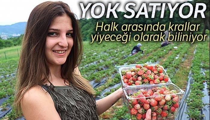 Fiyatı 40 TL'yi bulan Osmanlı Çileği yok satıyor