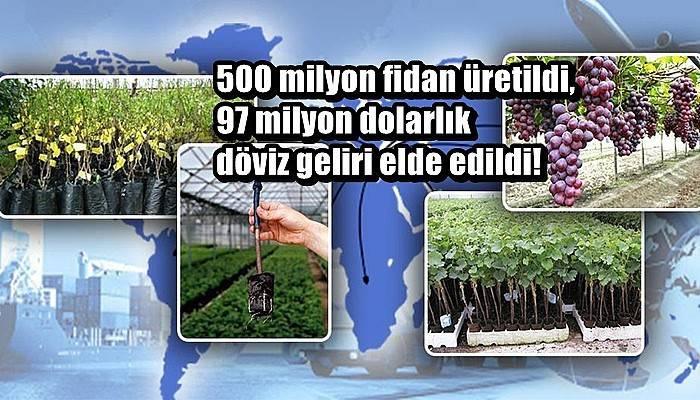 500 milyon fidan üretildi, 97 milyon dolarlık döviz geliri elde edildi!