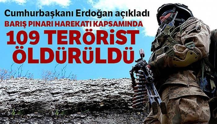 Cumhurbaşkanı Erdoğan: 'Barış Pınarı Harekatı kapsamında 109 terörist öldürüldü'