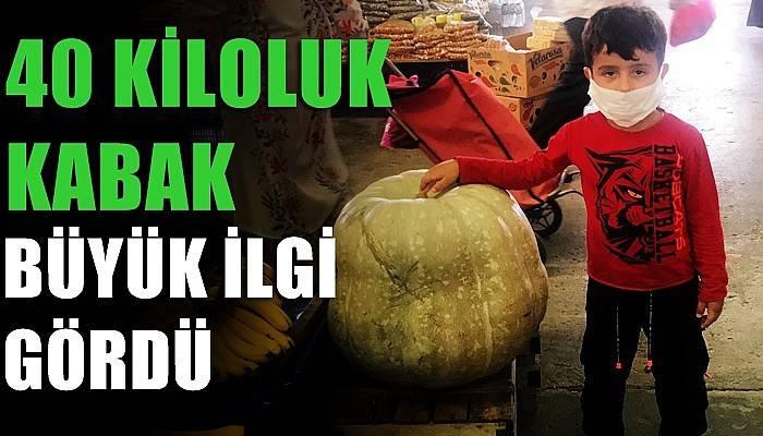 Çan pazarındaki 40 kiloluk kabak büyük ilgi gördü (VİDEO)