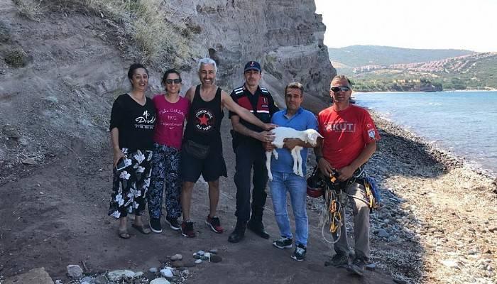 2 Gün Kayalıklarda Mahsur Kalan Oğlak Kurtarıldı