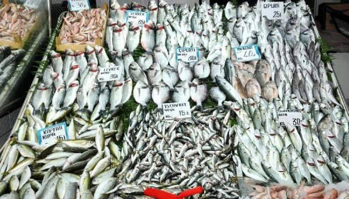 Balık severlere güzel haber!