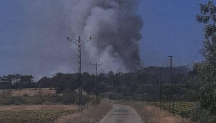 Edirne-Çanakkale sınırında orman yangını
