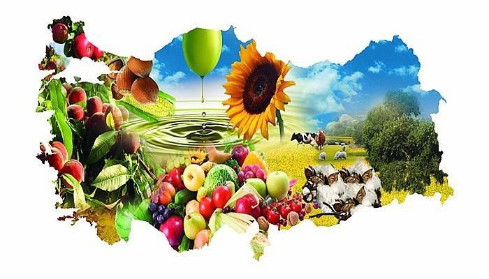 Dünyadaki 544 milyar dolarlık tarımsal ürünün anavatanı Türkiye