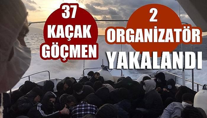 Ayvacık açıklarında yelkenli teknede 37 kaçak göçmen ile 2 organizatör yakalandı