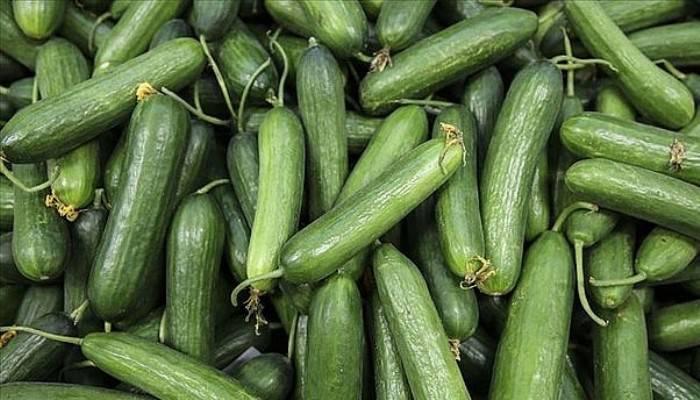 Ağustos'ta fiyatı en fazla artan ürün salatalık, en çok düşen erik