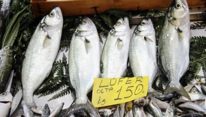Balık Fiyatları El Yakıyor: Lüferin Kilosu150 TL