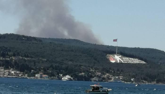 Çanakkale'de yangın!