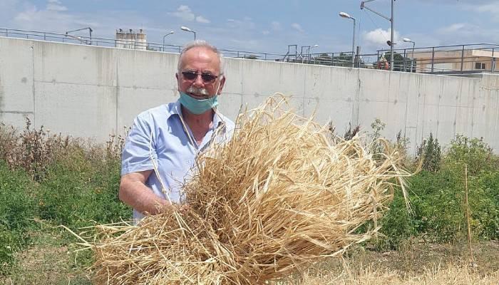 Başkan Gökhan'dan ilk hasat