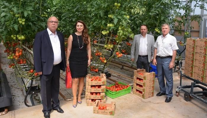 Çanakkale Ticaret Borsası'ndan Mavruz Tarım Serası'na ziyaret
