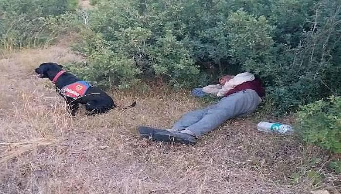 Kayıp Zihinsel Engelliyi İz Takip Köpeği 'Roka' Buldu