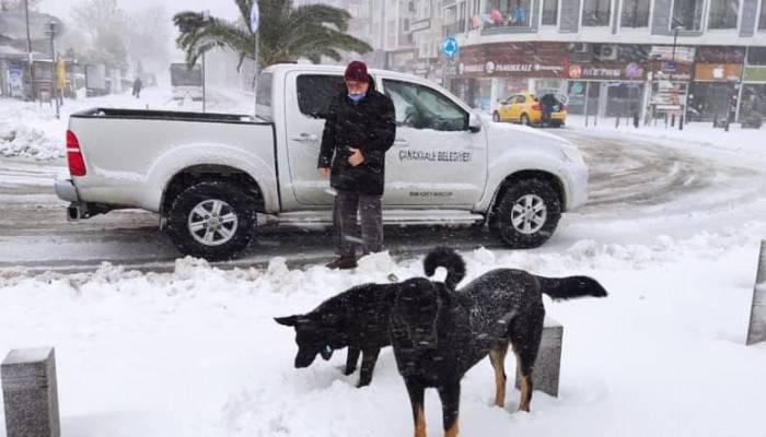 Çanakkale Belediyesi can dostları unutmadı