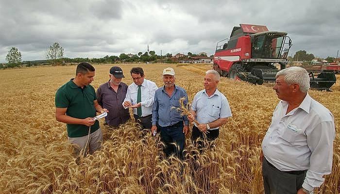 Biga Buğday Demonstrasyonu