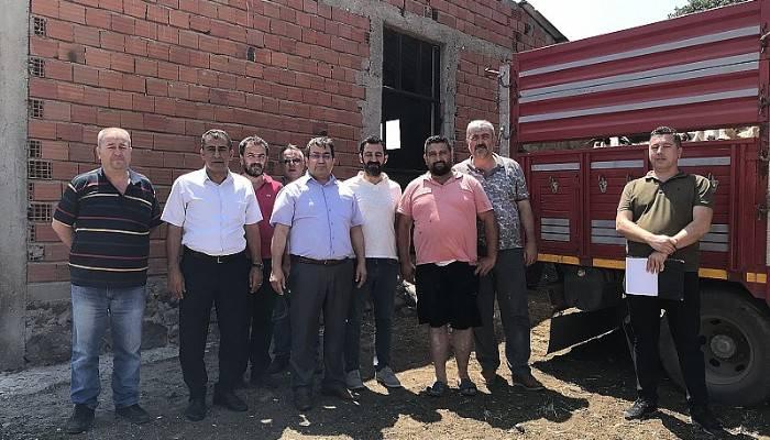 Ayvacık'ta 4 Çiftçiye 136 Koyun Hibe Edildi