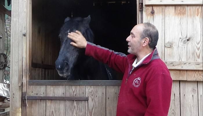 Atlarla yaşıyor, atların renkli yaşamlarını yazıyor (VİDEO)