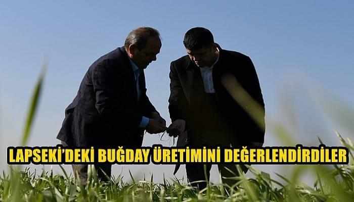 Lapseki'deki buğday üretimini değerlendirdiler