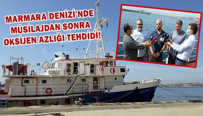 Marmara Denizi'nde müsilajdan sonra oksijen azlığı tehdidi! (VİDEO)