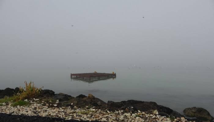 Çanakkale'de, Gelibolu- Lapseki feribot seferleri yeniden başladı
