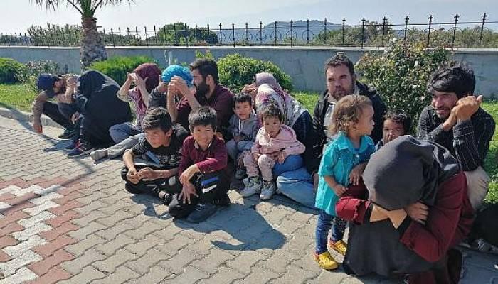 Çanakkale'de 48 kaçak göçmen yakalandı (VİDEO)