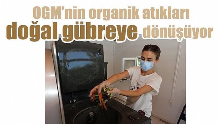 OGM'nin organik atıkları doğal gübreye dönüşüyor