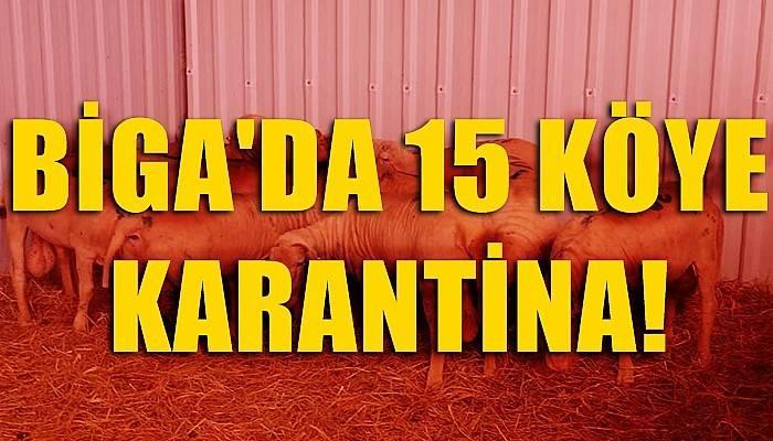 Biga'da 15 köye karantina kararı
