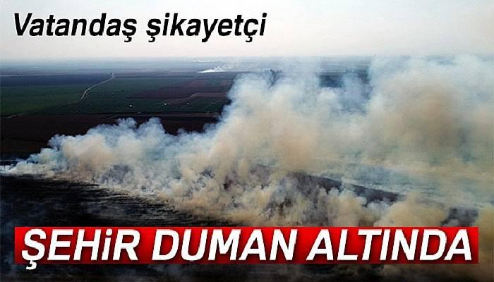 Anız yangınları Adana'yı boğuyor