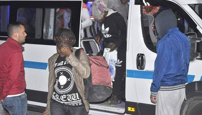 Ayvacık'ta 46 kaçak yakalandı