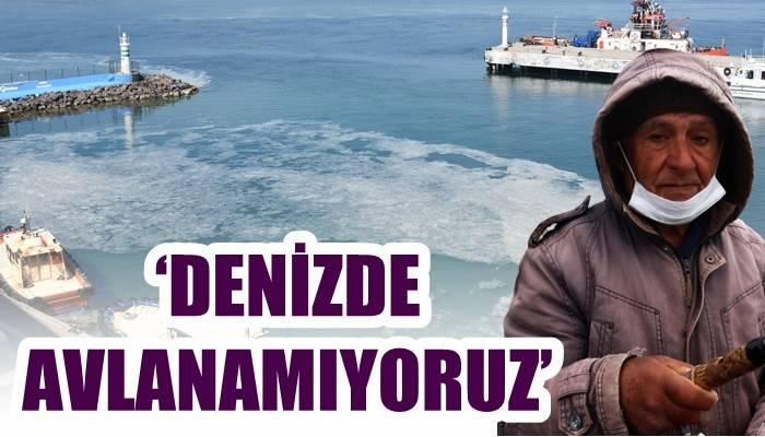 Çanakkale Boğazı'nda 'müsilaj' kabusu devam ediyor (VİDEO)
