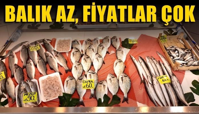 Balık az, fiyatlar yüksek!