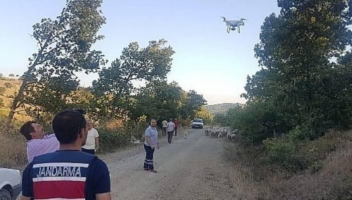 Kaybolan 56 koyunu jandarma drone ile buldu