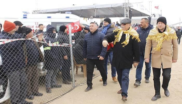Troia Festivali'ni iptal eden belediye, deve güreşi festivaline 255 bin lira harcadı