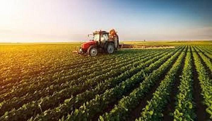 Bitkisel üretimin artacağı tahmin ediliyor