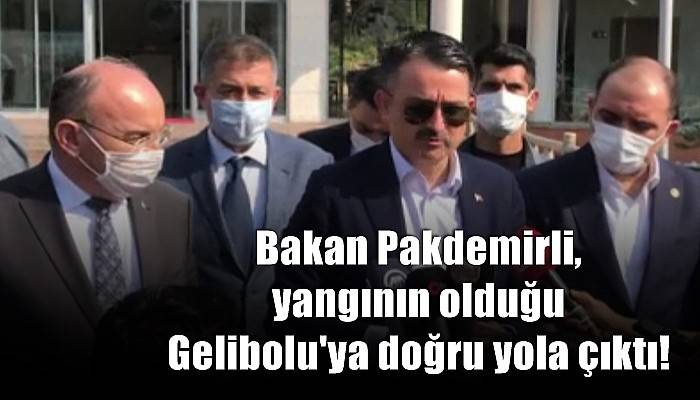 Bakan Pakdemirli'den Gelibolu yangınıyla ilgili açıklama