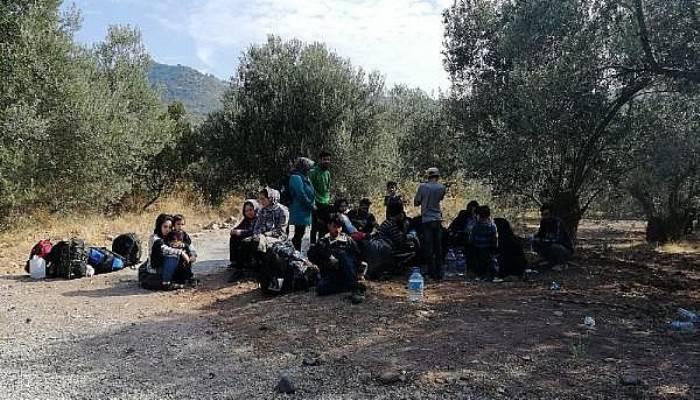Çanakkale'de 1134 kaçak göçmen yakalandı, 5 organizatör tutuklandı